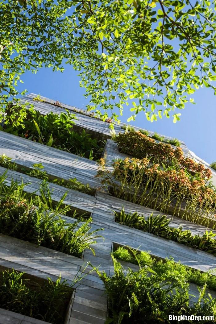 nha pho 4 tang ngap tran cay xanh o da nang 1 062759993 Mẫu ngôi nhà 4 tầng với vườn cây xanh mát quanh năm ở Đà Nẵng