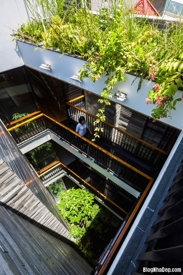 nha pho 4 tang ngap tran cay xanh o da nang 3 062800181 Mẫu ngôi nhà 4 tầng với vườn cây xanh mát quanh năm ở Đà Nẵng