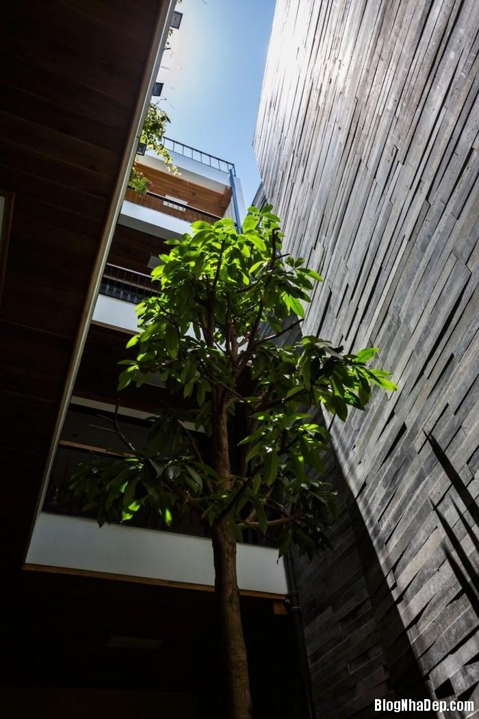 nha pho 4 tang ngap tran cay xanh o da nang 5 062800227 Mẫu ngôi nhà 4 tầng với vườn cây xanh mát quanh năm ở Đà Nẵng