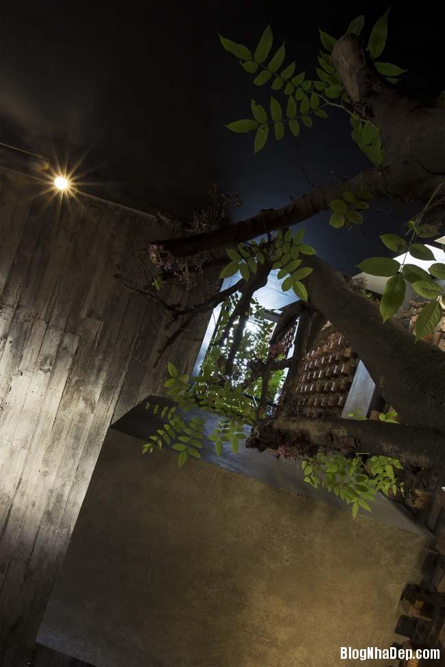 mau nha pho dep tai ha noi 11 Mẫu nhà phố đẹp với thiết kế đầy phá cách tại Hà Nội