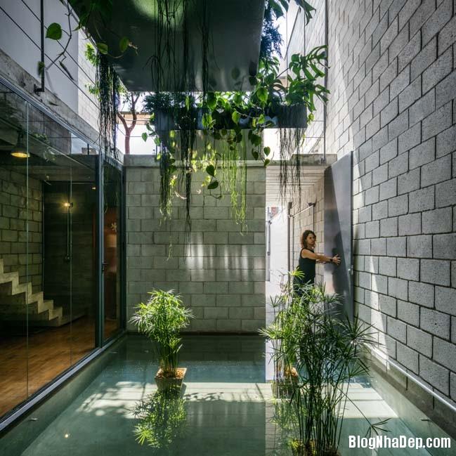 mau nha dep 2 tang 02 Mẫu nhà cực đẹp với thiết kế tràn ngập ánh sáng và cây xanh