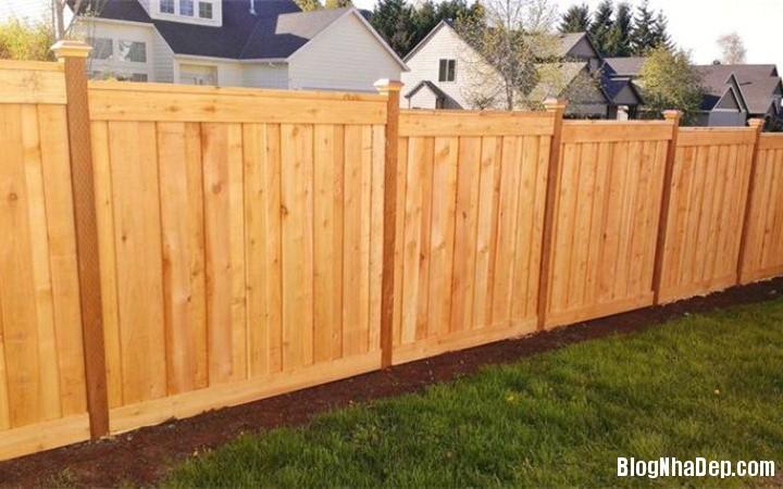 6 ZAMR Những mẫu hàng rào khiến ngôi nhà của bạn đẹp như tranh vẽ