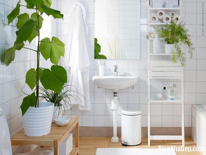 img20170526142944368 'Xanh hóa' không gian phòng tắm đem lại cảm giác bình yên