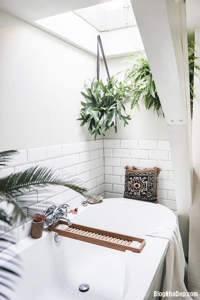 img20170526142944618 'Xanh hóa' không gian phòng tắm đem lại cảm giác bình yên