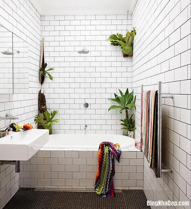 img20170526142946899 'Xanh hóa' không gian phòng tắm đem lại cảm giác bình yên