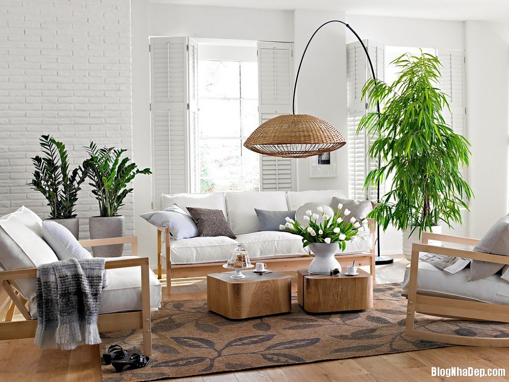 620 Mẫu phòng khách vừa xanh vừa đẹp thân thiện cho ngôi nhà