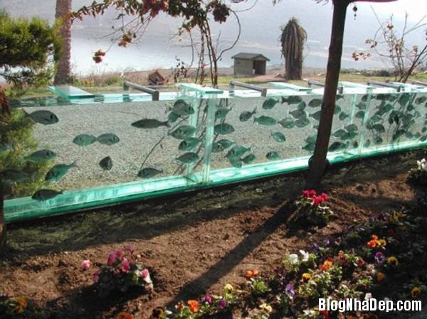beca080114 4 Mehmet biệt thự với hàng rào bằng dãy bể cả dài 50m