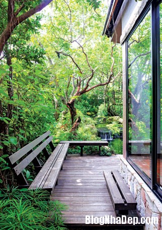 20130830095650628 Ngôi nhà vườn đúng chất gần gũi thiên nhiên ở Bangkok