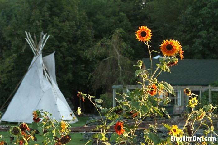 20131211013048538 Ngôi nhà tuyệt đẹp với cối xay gió ở Rhode Island, Mỹ