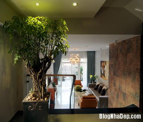 Nha Quoc 5 1 3390 1394620124 Thiết kế tăng thêm diện tích cho ngôi nhà phố