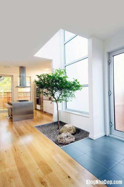 cool and amazing indoor1 Góc thư giãn bên trong ngôi nhà