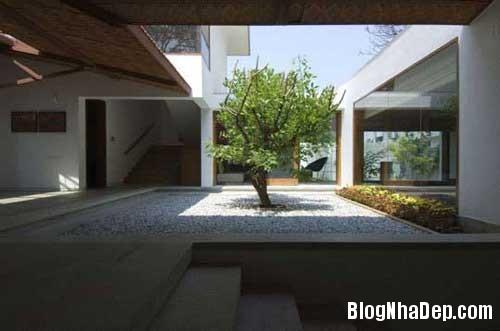 cool and amazing indoor6 Góc thư giãn bên trong ngôi nhà