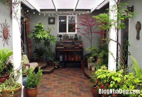 file.320466 Tạo không gian vườn cho nhà phố