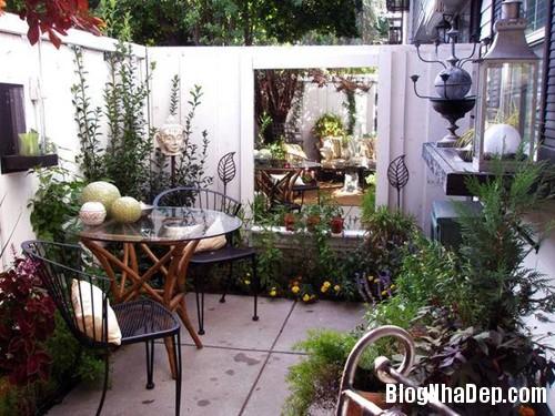 file.320469 Tạo không gian vườn cho nhà phố