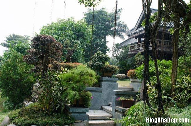 file.341783 Thăm khu trang trại riêng ở Gia Lâm, Hà Nội của Sao Mai Khánh Ly