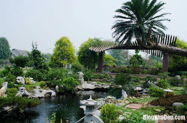 file.341785 Thăm khu trang trại riêng ở Gia Lâm, Hà Nội của Sao Mai Khánh Ly