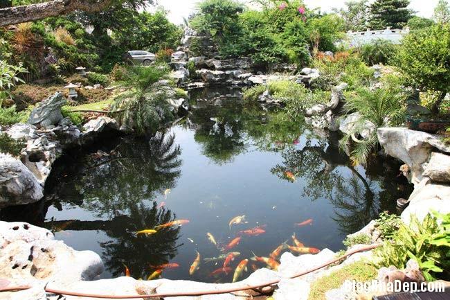 file.341787 Thăm khu trang trại riêng ở Gia Lâm, Hà Nội của Sao Mai Khánh Ly
