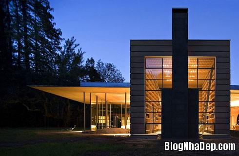 file42 Ngôi nhà hiện đại trên đồng cỏ xanh ngắt