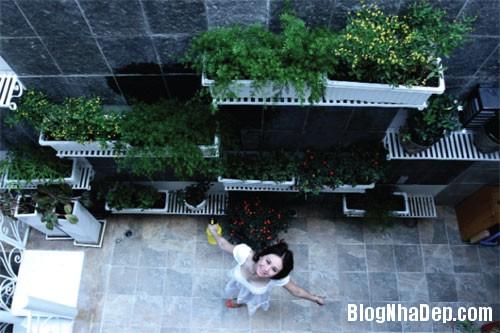 file 00477 Nhà vườn rộng rãi của hoa hậu Mỹ Vân