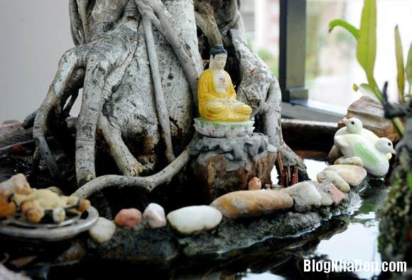 file 01416 Thăm ngôi nhà khang trang của danh hài Tấn Beo