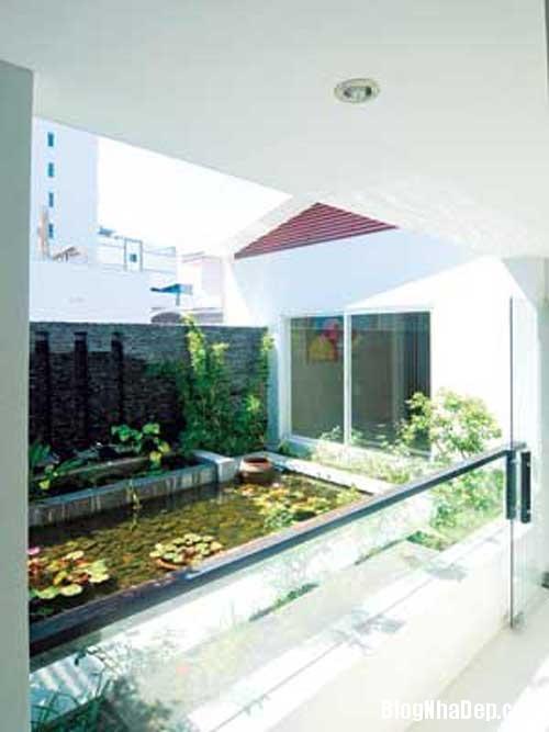 ngoi nha nhieu goc xanh2 Ngôi nhà thân thiện với thiên nhiên