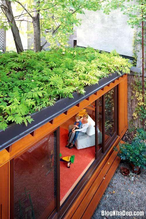 20140421073837759 Những lợi ích của vườn trên mái nhà