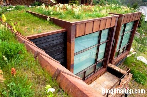 20140421073850130 Những lợi ích của vườn trên mái nhà