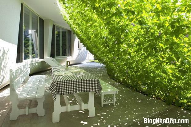20140604071820827 Xoa dịu cái nắng của mùa hè trong căn nhà nhỏ