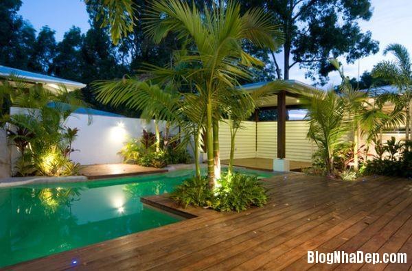 20140609041448170 Làm đẹp cho hồ bơi tại nhà