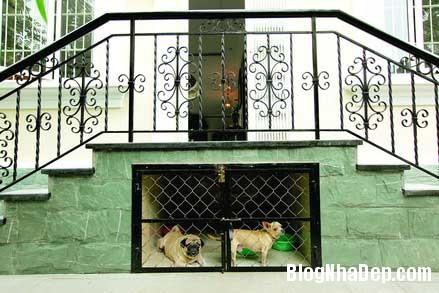 Ngoi nha cua nhung thu choi 5 Ngôi nhà của những thú chơi