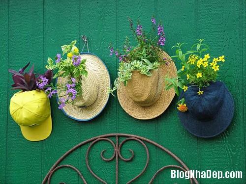file.403846 Một chút khéo léo cho khu vườn thêm đẹp