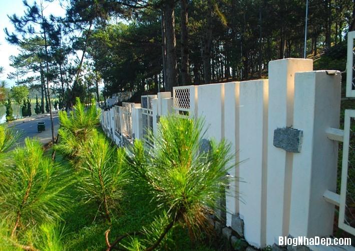 file 00216 Những bờ rào đẹp mộng mơ của Đà Lạt