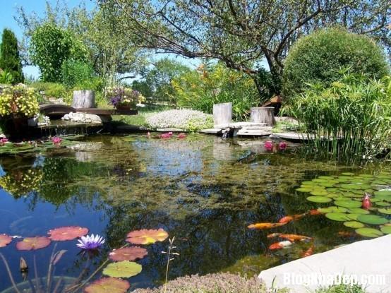 file 00915 Bài trí ao nước róc rách cho khu vườn