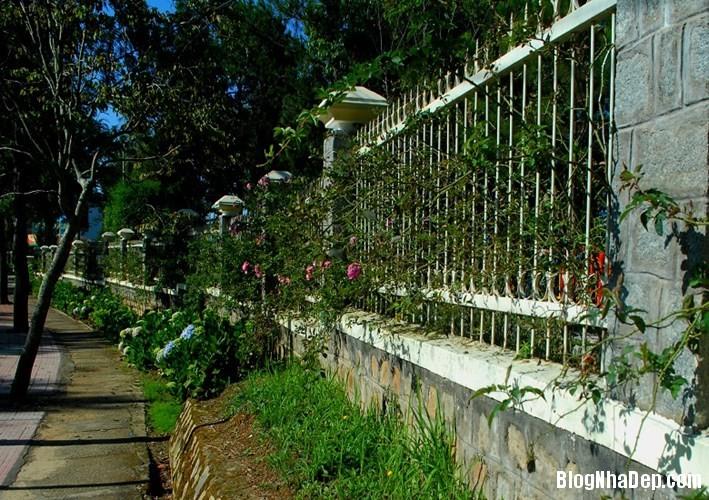 file 01315 Những bờ rào đẹp mộng mơ của Đà Lạt