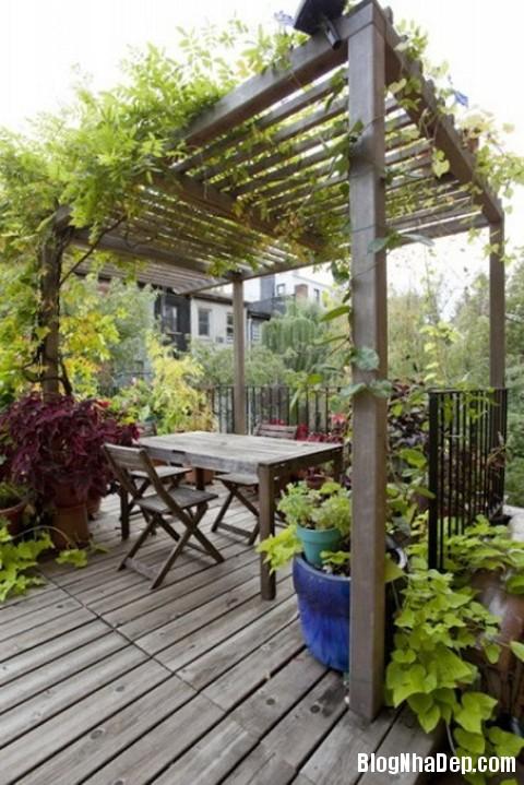 file 01414 Thiết kế sân vườn theo phong cách patio