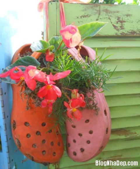 y tuong doc dao trong cay vao giay cu 3 Độc đáo chậu hoa được tận dụng từ giày dép cũ