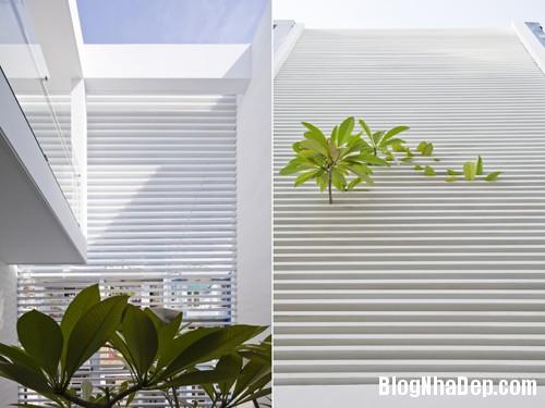 1403596080 10 horz Nhà ống 80m2 tràn ngập không gian xanh ở Sài Gòn