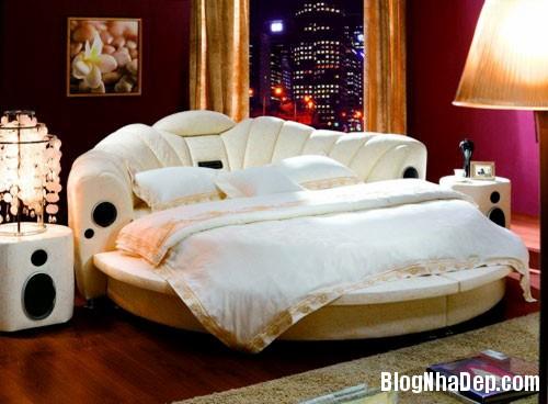 giuong tron  Sự quyến rũ của những chiếc giường tròn