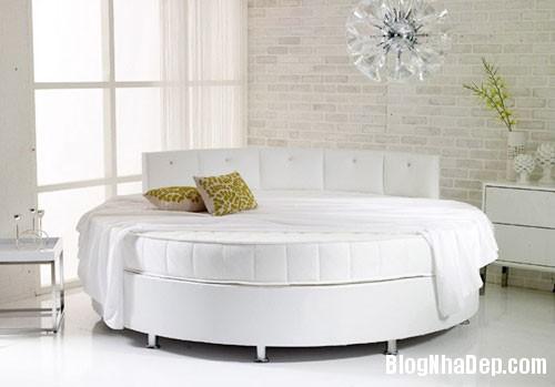 giuong tron1  Sự quyến rũ của những chiếc giường tròn