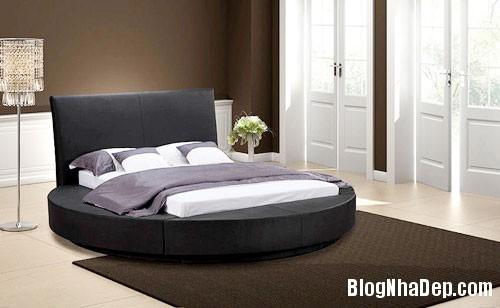 giuong tron3  Sự quyến rũ của những chiếc giường tròn