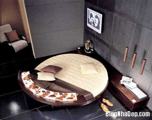 giuong tron5  Sự quyến rũ của những chiếc giường tròn