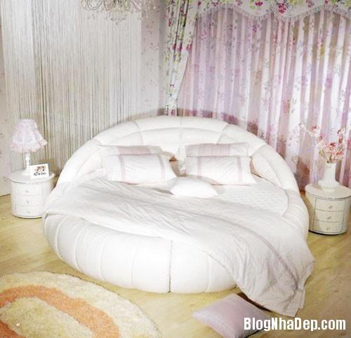 giuong tron8  Sự quyến rũ của những chiếc giường tròn