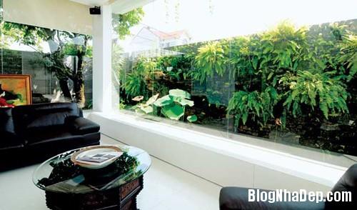 khoe nha vuon an minh sau pho thi 4 Ngắm ngôi nhà vườn mang đậm phong cách Á Đông