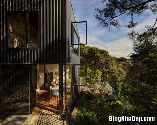 nha khong gian mo thoang 6 Căn nhà với hình dáng giống chiếc container ở New Zeeland