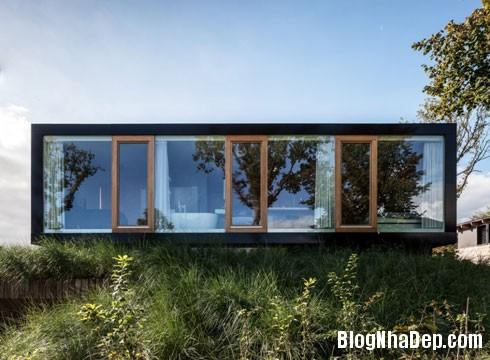nha sau lop co 1 Ngôi nhà hiện đại ẩn mình sau đám cỏ xanh mướt