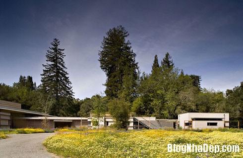 nha thuy tinh 5 Dinh thự bằng kính tuyệt đẹp trên đồng cỏ xanh ngắt