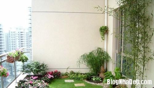 vuon san thuong01 7100 1404458170 Bố trí vườn trên sân thượng