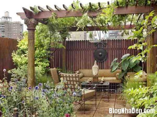 vuon san thuong08 7506 1404458166 Bố trí vườn trên sân thượng