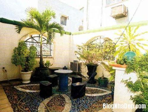 vuon san thuong11 5074 1404458171 Bố trí vườn trên sân thượng