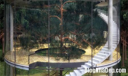 889fc8ae91ecd3c03d29cf751ab9acb6 Ngôi nhà tree house độc đáo ở vùng núi Almaty